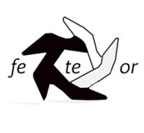 FeTeOr_MIni_pin